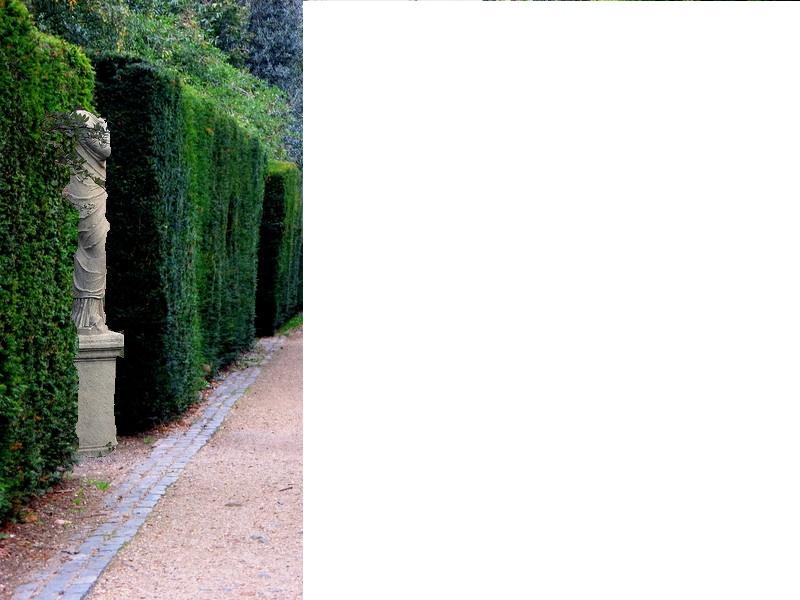 Statue hidden in hedge