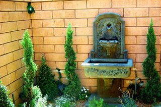 Suzi's garden 1-1