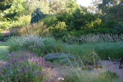 Gravel-garden-aug07