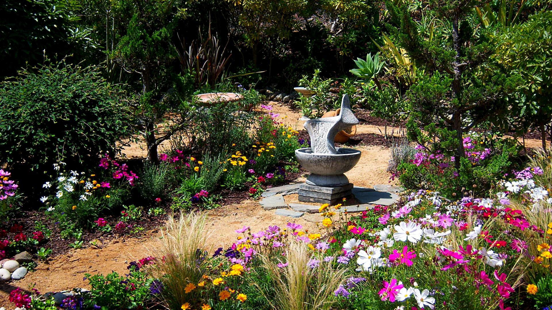 Fountain Area August 2 Specializing In Drought Tolerant